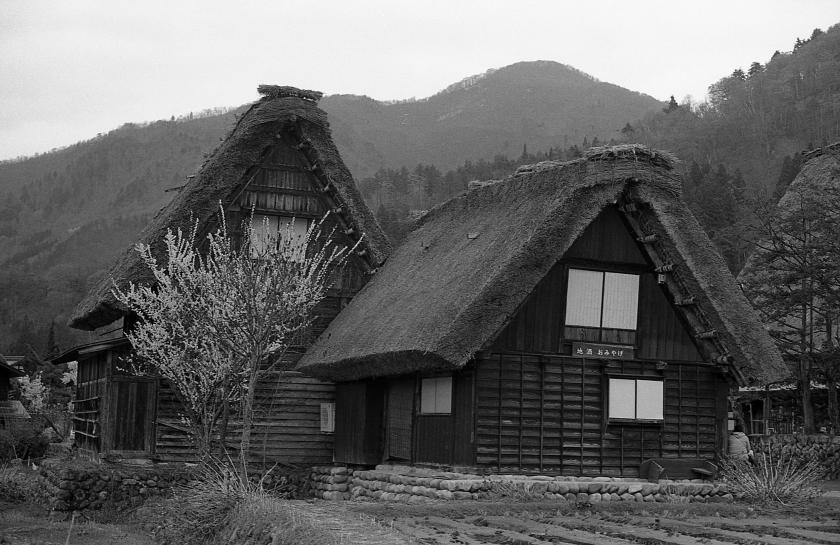Ogimachi Village, Shirakawa-go